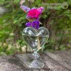 Стеклянная ваза Сердце